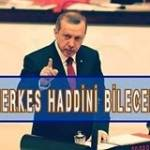 Hakan Seher Profile Picture